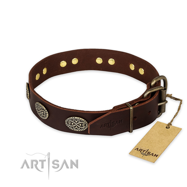 Reliable traditional buckle on natural genuine leather collar for your beautiful pet