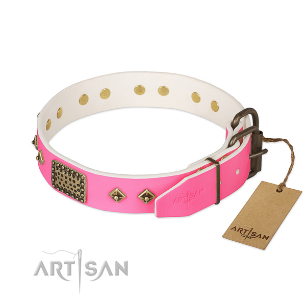 Strong embellishments on daily use dog collar