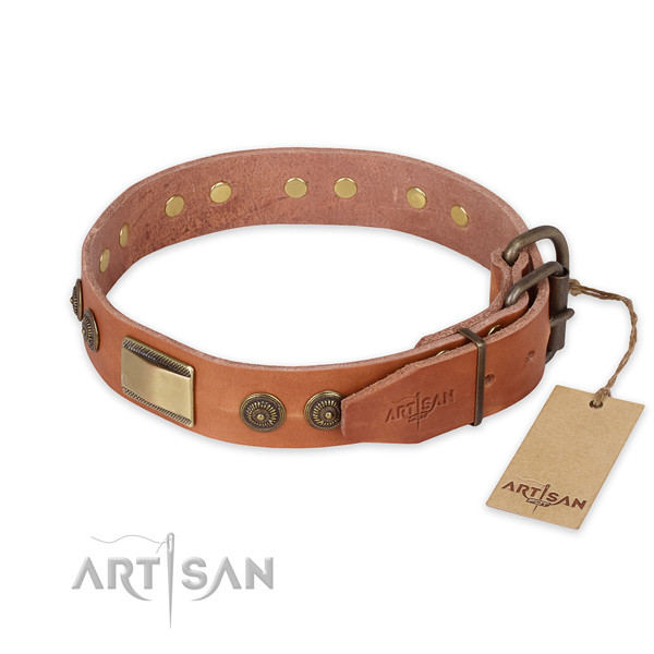 Rust-proof traditional buckle on full grain genuine leather collar for daily walking your dog