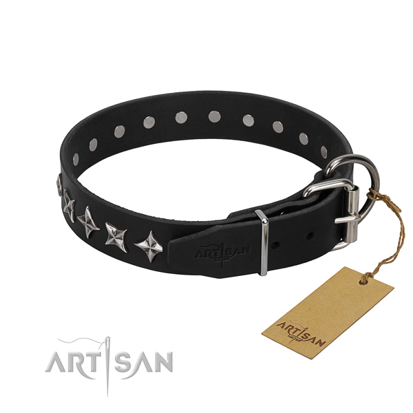 Daily walking studded dog collar of strong full grain genuine leather