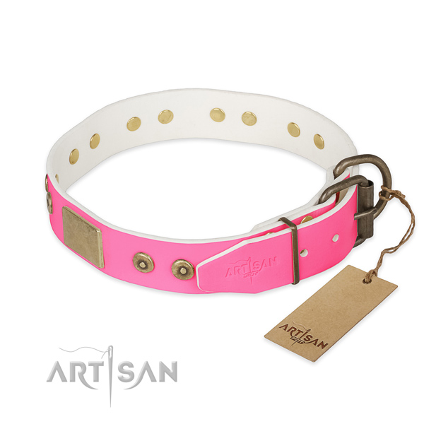 Corrosion resistant embellishments on daily use dog collar