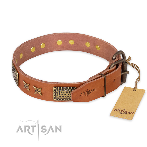 Strong D-ring on leather collar for your impressive doggie