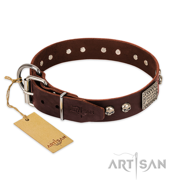 Corrosion proof fittings on everyday use dog collar
