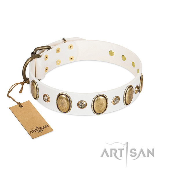 Natural leather dog collar of soft to touch material with exceptional studs