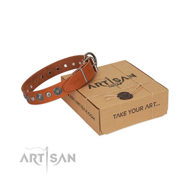 Genuine leather collar with durable D-ring for your handsome four-legged friend