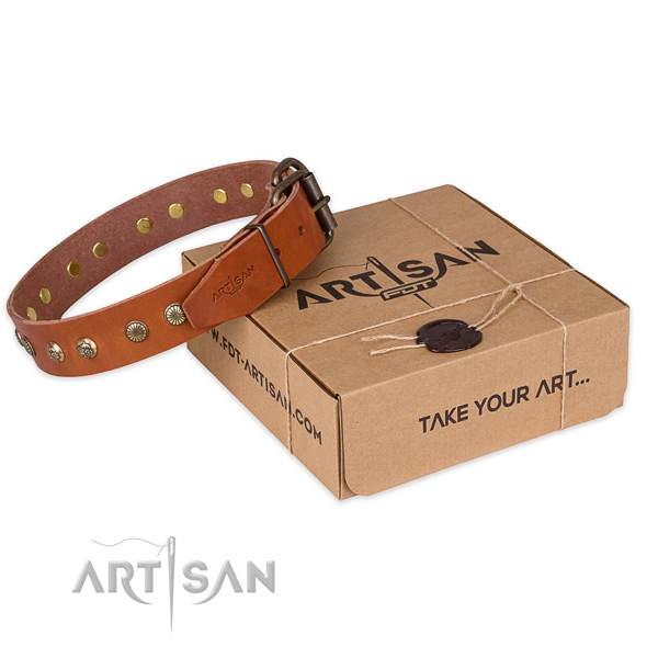 Rust-proof buckle on full grain genuine leather collar for your stylish pet