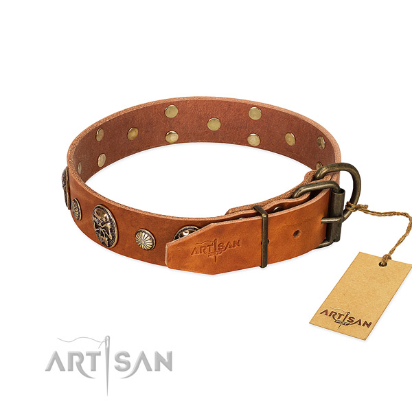 Durable hardware on full grain genuine leather collar for daily walking your four-legged friend