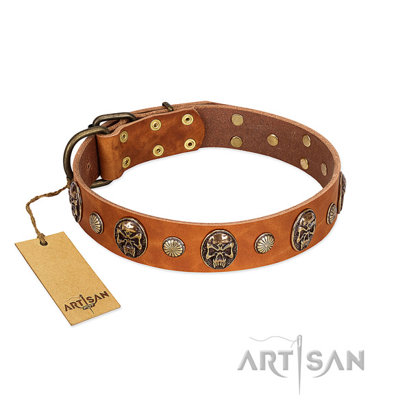 Easy wearing genuine leather dog collar for walking