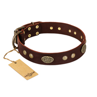 """Old-fashioned Glamor"" FDT Artisan Brown Leather dog Collar with Old Bronze Look Plates and Circles"
