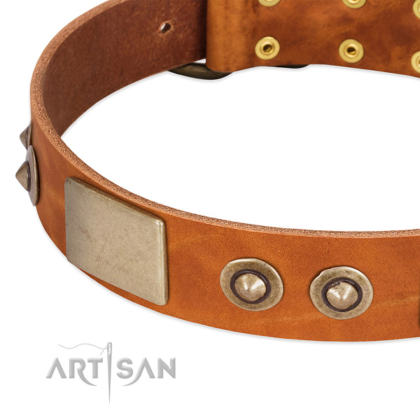 Reliable decorations on natural genuine leather dog collar for your dog