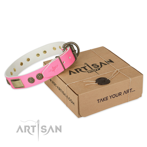 Reliable fittings on dog collar for handy use