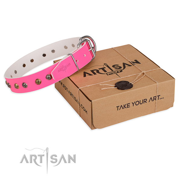 Comfortable wearing dog collar with Impressive corrosion proof studs
