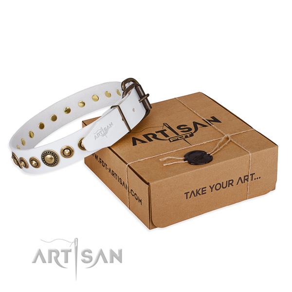 High quality genuine leather dog collar created for everyday use