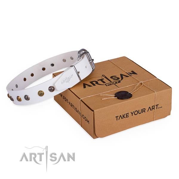 Stylish walking dog collar with Exceptional corrosion resistant embellishments