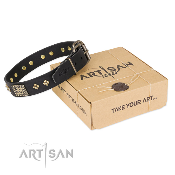 Designer full grain leather collar for your impressive canine