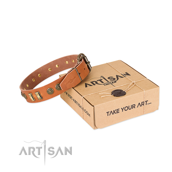 Durable decorations on full grain natural leather dog collar for your canine
