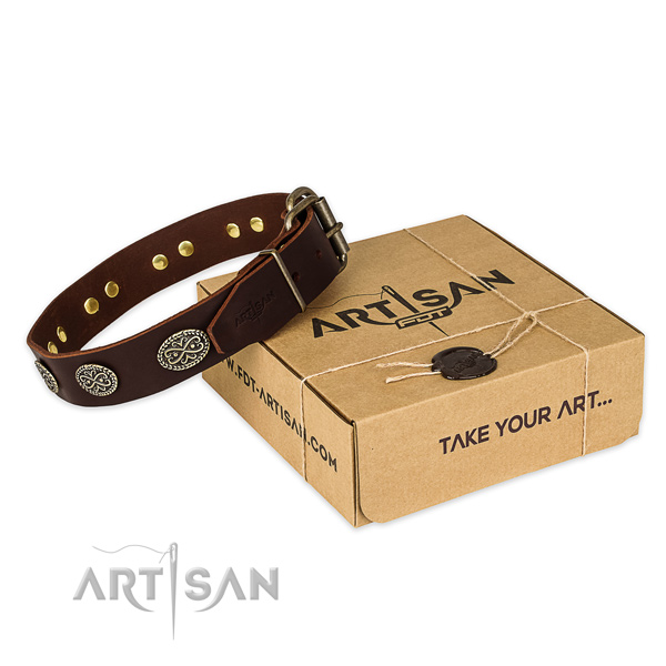 Reliable hardware on leather collar for your lovely pet