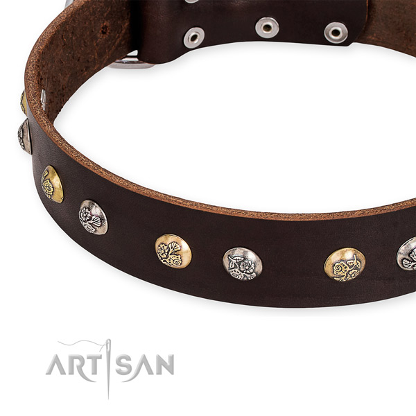 Full grain leather dog collar with trendy rust resistant embellishments