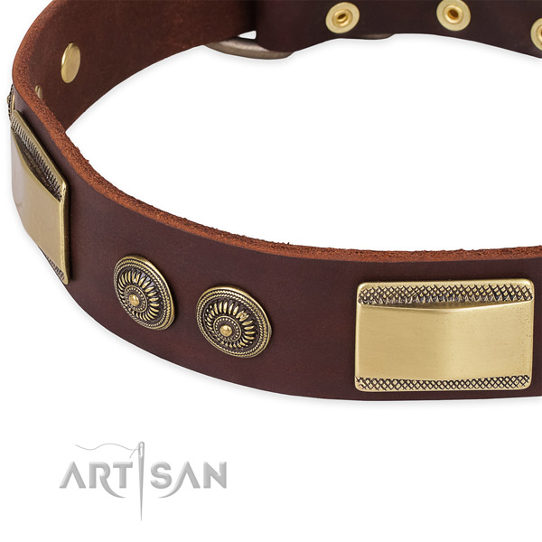 Easy to adjust genuine leather collar for your lovely canine