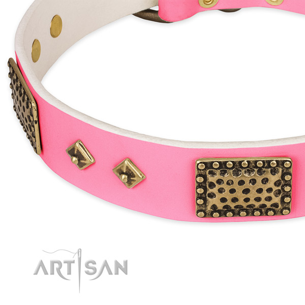 Leather dog collar with studs for stylish walking