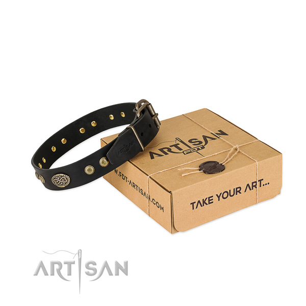 Corrosion proof traditional buckle on full grain natural leather dog collar for your four-legged friend