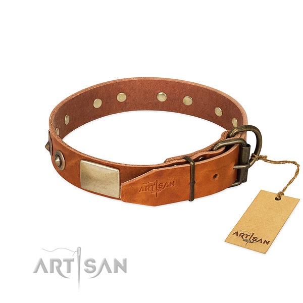 Durable hardware on comfortable wearing dog collar