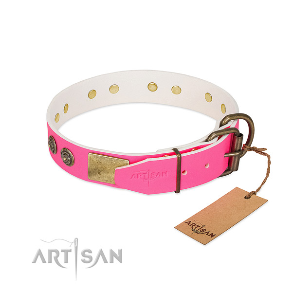 Corrosion proof hardware on genuine leather collar for daily walking your pet