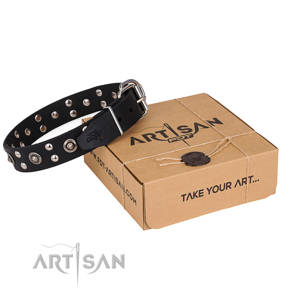 Handy use dog collar with Designer corrosion proof adornments