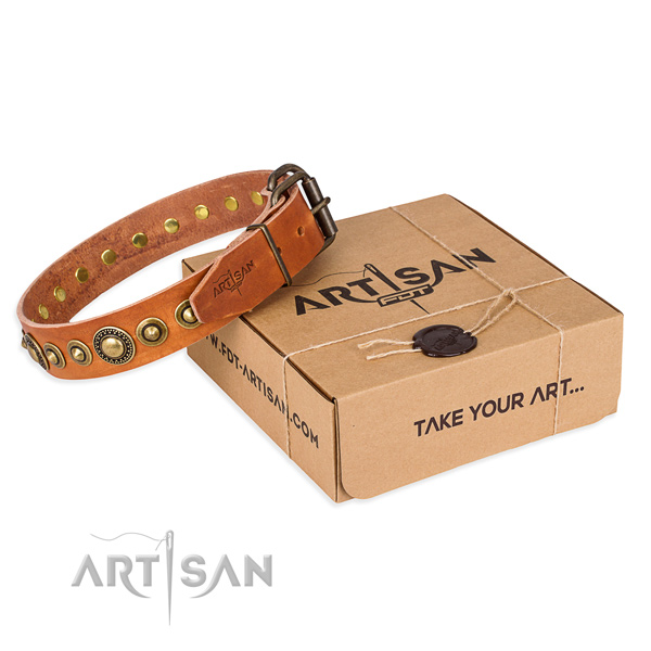 Soft full grain genuine leather dog collar crafted for basic training