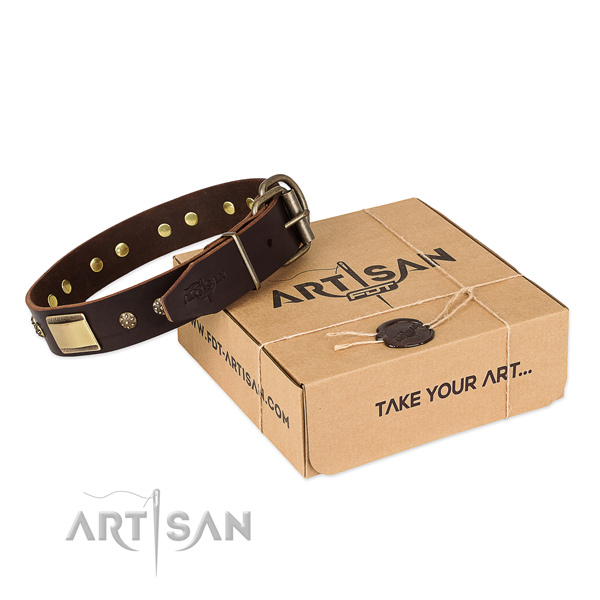 Fashionable full grain genuine leather collar for your handsome pet