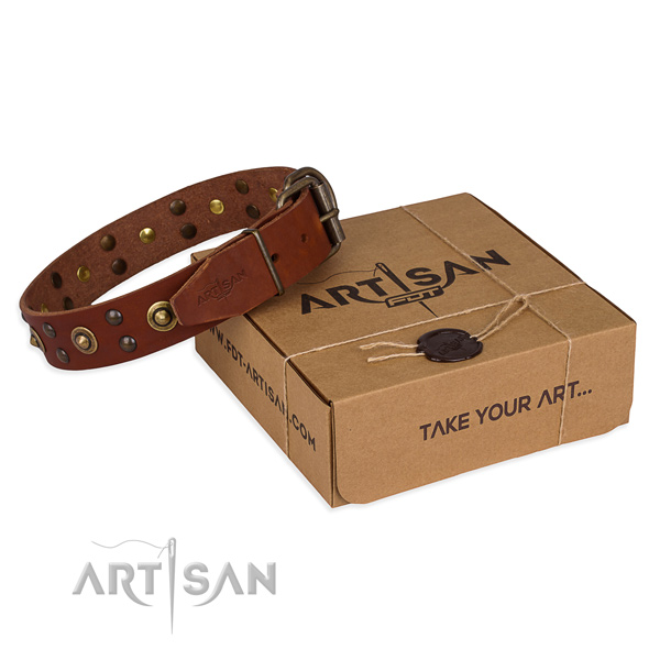 Corrosion proof buckle on full grain genuine leather collar for your lovely doggie