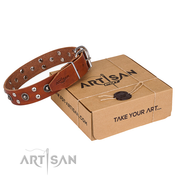 Durable fittings on leather collar for your stylish canine