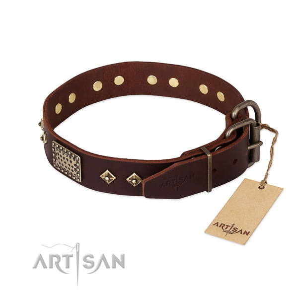Genuine leather dog collar with rust-proof buckle and studs