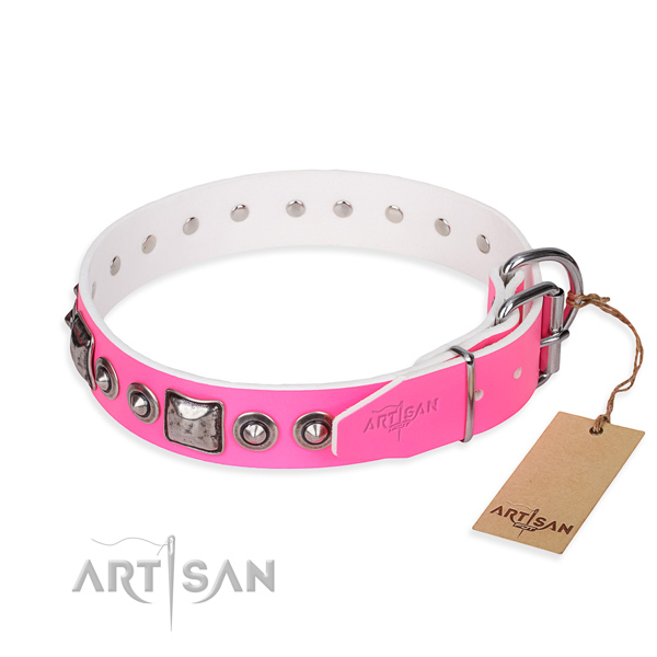 Best quality leather dog collar created for everyday walking