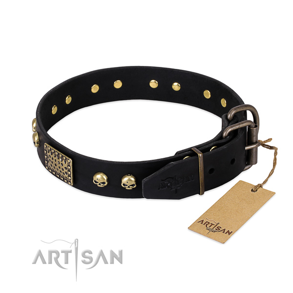 Reliable decorations on everyday walking dog collar