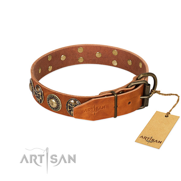 Corrosion resistant traditional buckle on comfy wearing dog collar