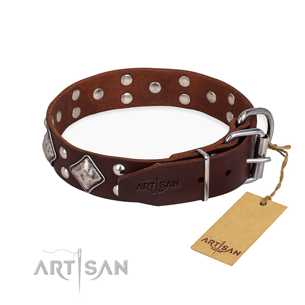 Genuine leather dog collar with unusual corrosion resistant studs