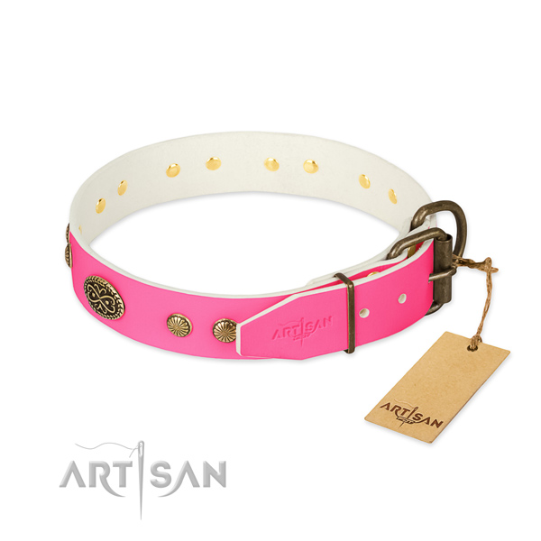 Rust-proof adornments on full grain natural leather dog collar for your four-legged friend