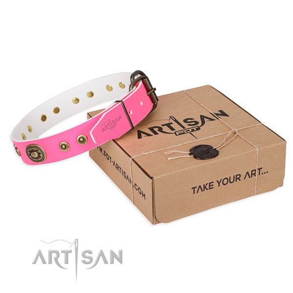 Leather dog collar made of top notch material with corrosion resistant hardware