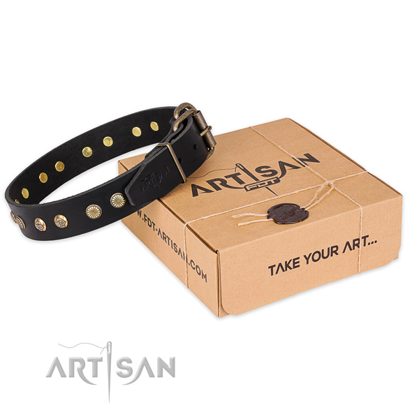 Rust resistant fittings on leather collar for your lovely dog