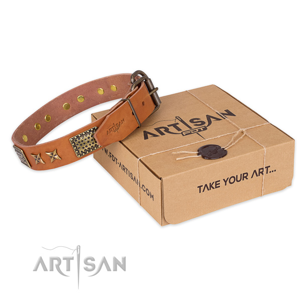 Strong buckle on genuine leather collar for your stylish dog
