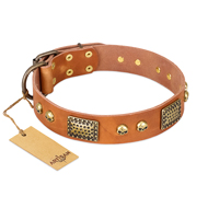 """Saucy Nature"" FDT Artisan Tan Leather dog Collar with Old Bronze Look Plates and Skulls"