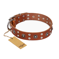 """Silver Elegance"" FDT Artisan Decorated Leather dog Collar with Old Silver-Like Plated Studs and Cones"