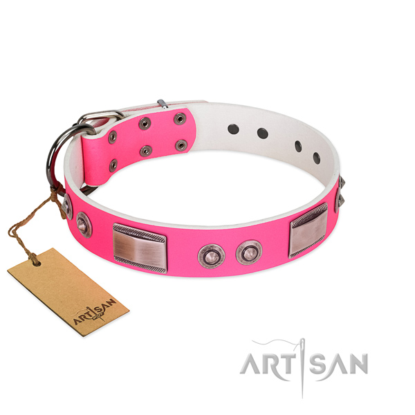 Amazing dog collar of genuine leather with adornments