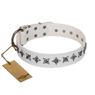 """Midnight Stars"" FDT Artisan Fashionable Leather dog Collar with Old Silver-like Plated Decorations"