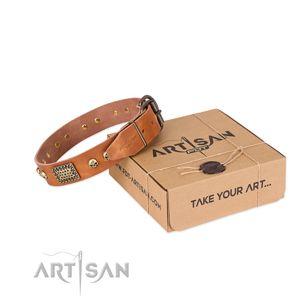 Rust resistant buckle on dog collar for everyday walking