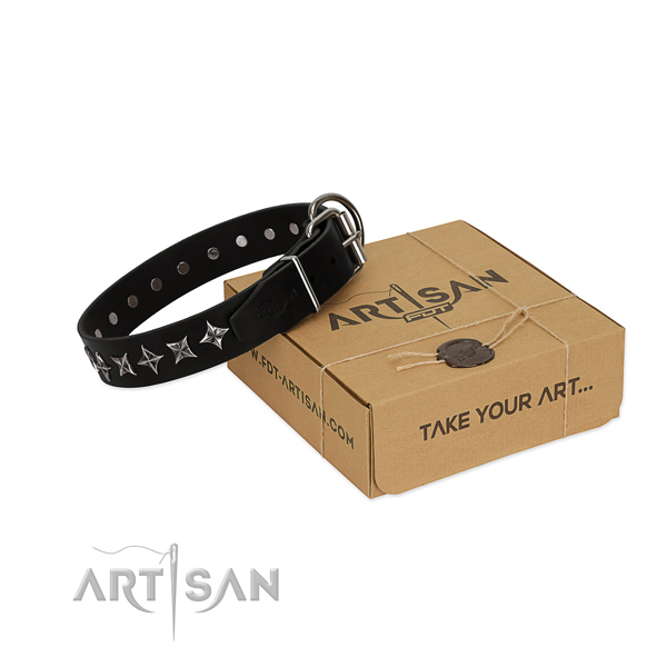 Basic training dog collar of high quality full grain leather with adornments