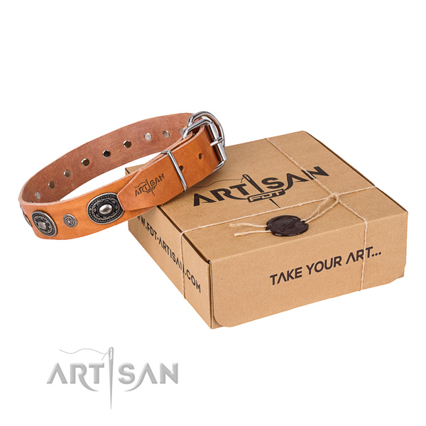 Reliable genuine leather dog collar made for everyday use