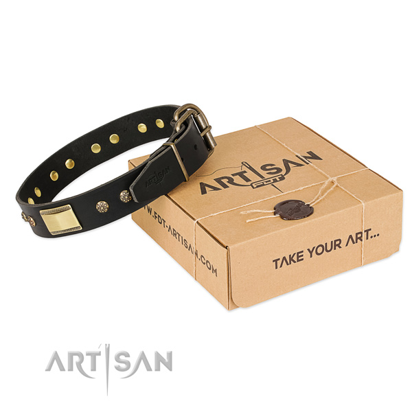 Unique leather collar for your beautiful canine