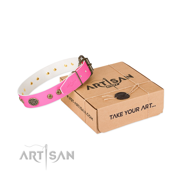 Reliable embellishments on full grain leather dog collar for your dog